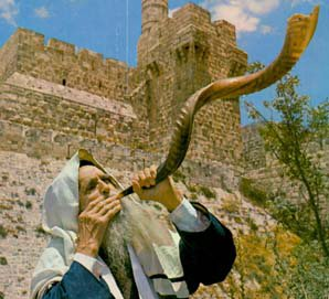 shofar-murajerus